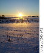 Купить «Мороз и солнце», фото № 245942, снято 2 января 2008 г. (c) Андрей Никитин / Фотобанк Лори