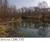 Купить «Весенние отражения», фото № 246110, снято 8 апреля 2008 г. (c) Олег Рубик / Фотобанк Лори