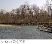 Купить «Весенняя Уссури», фото № 246118, снято 8 апреля 2008 г. (c) Олег Рубик / Фотобанк Лори