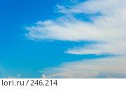 Купить «Голубое небо и облака», фото № 246214, снято 30 июня 2007 г. (c) Валерия Потапова / Фотобанк Лори