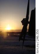 Купить «Завораживание», фото № 246350, снято 3 января 2007 г. (c) Дмитрий Зуев / Фотобанк Лори