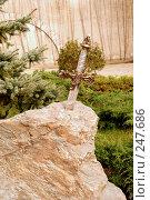 Купить «Меч эскалибур», фото № 247686, снято 23 марта 2008 г. (c) Лифанцева Елена / Фотобанк Лори