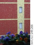 Купить «Город за дождливым окном», фото № 249266, снято 12 апреля 2008 г. (c) Demyanyuk Kateryna / Фотобанк Лори