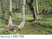 Купить «Река Баканка», фото № 249758, снято 12 апреля 2008 г. (c) Федор Королевский / Фотобанк Лори