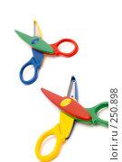 Купить «Фигурные ножницы, макро», фото № 250898, снято 12 апреля 2008 г. (c) Угоренков Александр / Фотобанк Лори