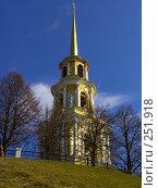 Купить «Колокольня Успенского собора Рязанского кремля. г. Рязань.», фото № 251918, снято 29 марта 2008 г. (c) УНА / Фотобанк Лори