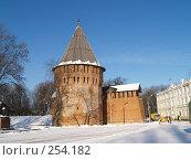 Купить «Город Смоленск. Громовая башня. Крепостная стена», фото № 254182, снято 26 января 2007 г. (c) Примак Полина / Фотобанк Лори