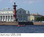 Купить «Ростральные колонны», фото № 255318, снято 12 августа 2006 г. (c) Алексей Семьёшкин / Фотобанк Лори