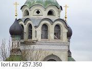 Купить «Малые купола колокольни (крупный план)», фото № 257350, снято 19 апреля 2008 г. (c) Сергей Бочаров / Фотобанк Лори