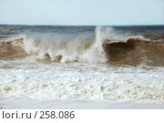 Купить «Черное море», фото № 258086, снято 25 марта 2008 г. (c) Лифанцева Елена / Фотобанк Лори