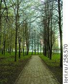 Купить «Виды села Константиново. Рязанская область», фото № 258570, снято 18 апреля 2008 г. (c) УНА / Фотобанк Лори