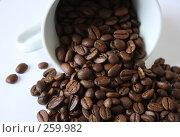 Купить «Кофе», фото № 259982, снято 25 марта 2008 г. (c) Юлия Смольская / Фотобанк Лори