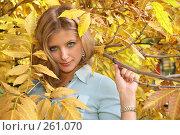Купить «Голубоглазая блондинка в осенней листве», фото № 261070, снято 16 октября 2018 г. (c) Losevsky Pavel / Фотобанк Лори