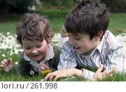 Купить «Дети в маргаритках», фото № 261998, снято 24 апреля 2008 г. (c) Екатерина Соловьева / Фотобанк Лори