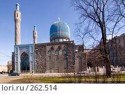 Купить «Соборная кафедральная мечеть Петербурга», эксклюзивное фото № 262514, снято 24 апреля 2008 г. (c) Александр Алексеев / Фотобанк Лори