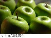 Купить «Яблоки», фото № 262554, снято 15 апреля 2008 г. (c) Нестерова Анна / Фотобанк Лори