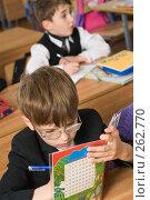 Купить «Два первоклассника на уроке математики», фото № 262770, снято 25 апреля 2008 г. (c) Федор Королевский / Фотобанк Лори