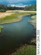Купить «Река Скорогадайка», фото № 264350, снято 19 сентября 2018 г. (c) Елена Падарян / Фотобанк Лори