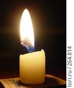 Купить «Свеча», фото № 264814, снято 30 октября 2005 г. (c) Валько Андрей Викторович / Фотобанк Лори