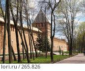 Купить «Крепостная стена. Город Смоленск», фото № 265826, снято 26 апреля 2008 г. (c) Примак Полина / Фотобанк Лори
