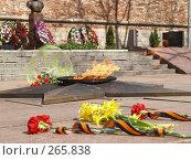 Купить «Вечный огонь», фото № 265838, снято 26 апреля 2008 г. (c) Примак Полина / Фотобанк Лори
