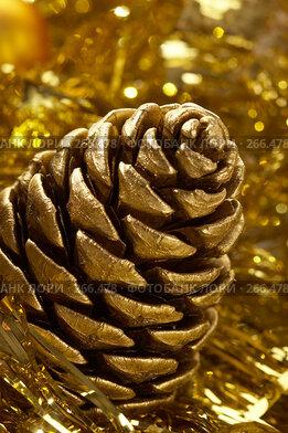 Купить «Золотая шишка», фото № 266478, снято 13 декабря 2005 г. (c) Кравецкий Геннадий / Фотобанк Лори