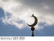 Купить «Полумесяц и ворона на фоне неба с облаками», фото № 267450, снято 27 апреля 2008 г. (c) Смирнова Ирина / Фотобанк Лори