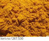 Купить «Порошок куркумы», фото № 267530, снято 26 апреля 2008 г. (c) Заноза-Ру / Фотобанк Лори