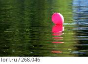Купить «Шар на воде», фото № 268046, снято 27 апреля 2008 г. (c) Виктория Щепкина / Фотобанк Лори