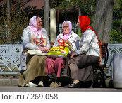 Купить «Женщины отдыхают на лавочке в парке Сокольники, Москва», эксклюзивное фото № 269058, снято 29 апреля 2008 г. (c) lana1501 / Фотобанк Лори