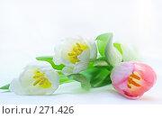 Купить «Тюльпаны», фото № 271426, снято 1 марта 2008 г. (c) Вероника Галкина / Фотобанк Лори