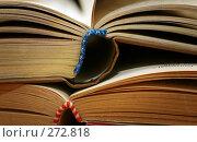 Купить «Две книги», фото № 272818, снято 11 мая 2007 г. (c) Морозова Татьяна / Фотобанк Лори