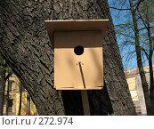 Купить «Скворечник на дереве», фото № 272974, снято 2 мая 2008 г. (c) Морковкин Терентий / Фотобанк Лори