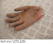 Купить «Рабочая перчатка», фото № 273226, снято 1 мая 2008 г. (c) Заноза-Ру / Фотобанк Лори