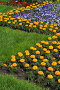 Весна,  пора цветения и буйства зелени, фото № 273582, снято 31 марта 2007 г. (c) Федор Королевский / Фотобанк Лори