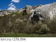 Купить «Скалы около Эски-Кермена», фото № 278994, снято 3 мая 2007 г. (c) Андрей Пашкевич / Фотобанк Лори