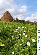 Купить «Горный луг летом», фото № 279618, снято 2 сентября 2007 г. (c) Юрий Брыкайло / Фотобанк Лори