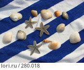 Купить «Морской натюрморт», фото № 280018, снято 17 февраля 2008 г. (c) Елена Велесова / Фотобанк Лори