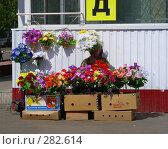 Купить «Уличная торговля искусственными цветами, Хабаровская улица, район Гольяново, Москва», эксклюзивное фото № 282614, снято 5 мая 2008 г. (c) lana1501 / Фотобанк Лори