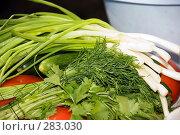 Купить «Зелень. Свежие овощи», эксклюзивное фото № 283030, снято 10 мая 2008 г. (c) Александр Щепин / Фотобанк Лори