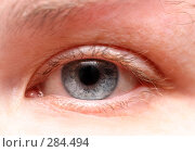 Купить «Глаз женщины крупным планом», фото № 284494, снято 20 апреля 2008 г. (c) Михаил Коханчиков / Фотобанк Лори