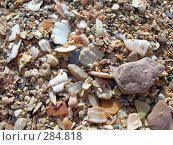 Купить «Береговой песок», фото № 284818, снято 1 августа 2006 г. (c) Михаил Комягин / Фотобанк Лори
