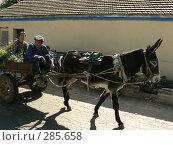 Купить «2 китайца едут в повозке», фото № 285658, снято 23 октября 2018 г. (c) Вера Тропынина / Фотобанк Лори
