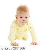 Купить «Малыш 7 месяцев», фото № 287866, снято 29 февраля 2008 г. (c) Вадим Пономаренко / Фотобанк Лори