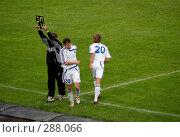 Купить «Замена», фото № 288066, снято 26 мая 2007 г. (c) Юлия Бобровских / Фотобанк Лори