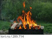 Купить «Мангал с дровами», эксклюзивное фото № 289714, снято 10 мая 2008 г. (c) Оксана Гильман / Фотобанк Лори