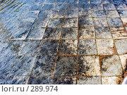 Купить «Дно фонтана», эксклюзивное фото № 289974, снято 16 мая 2008 г. (c) Александр Щепин / Фотобанк Лори