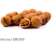 Купить «Грецкие орехи», фото № 290010, снято 29 января 2008 г. (c) Юрий Гник / Фотобанк Лори