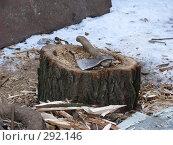 Купить «Топор», фото № 292146, снято 3 февраля 2008 г. (c) Михаил Ковалев / Фотобанк Лори