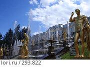 Купить «Большой каскад», фото № 293822, снято 23 июля 2007 г. (c) Журавлев Андрей / Фотобанк Лори
